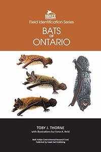 Bats of Ontario