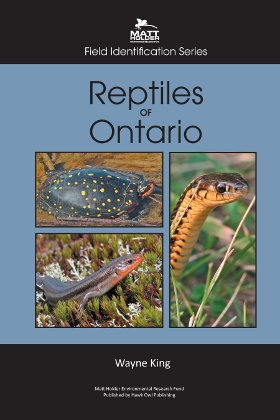 Reptiles Of Ontario